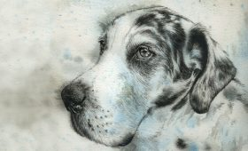Freckle – 21cm x 30cm Watercolour mounted and framed