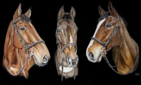 'We Three Kings' –  Raggy, Beauty and Trigger – 75 cm x 50cm Watercolour